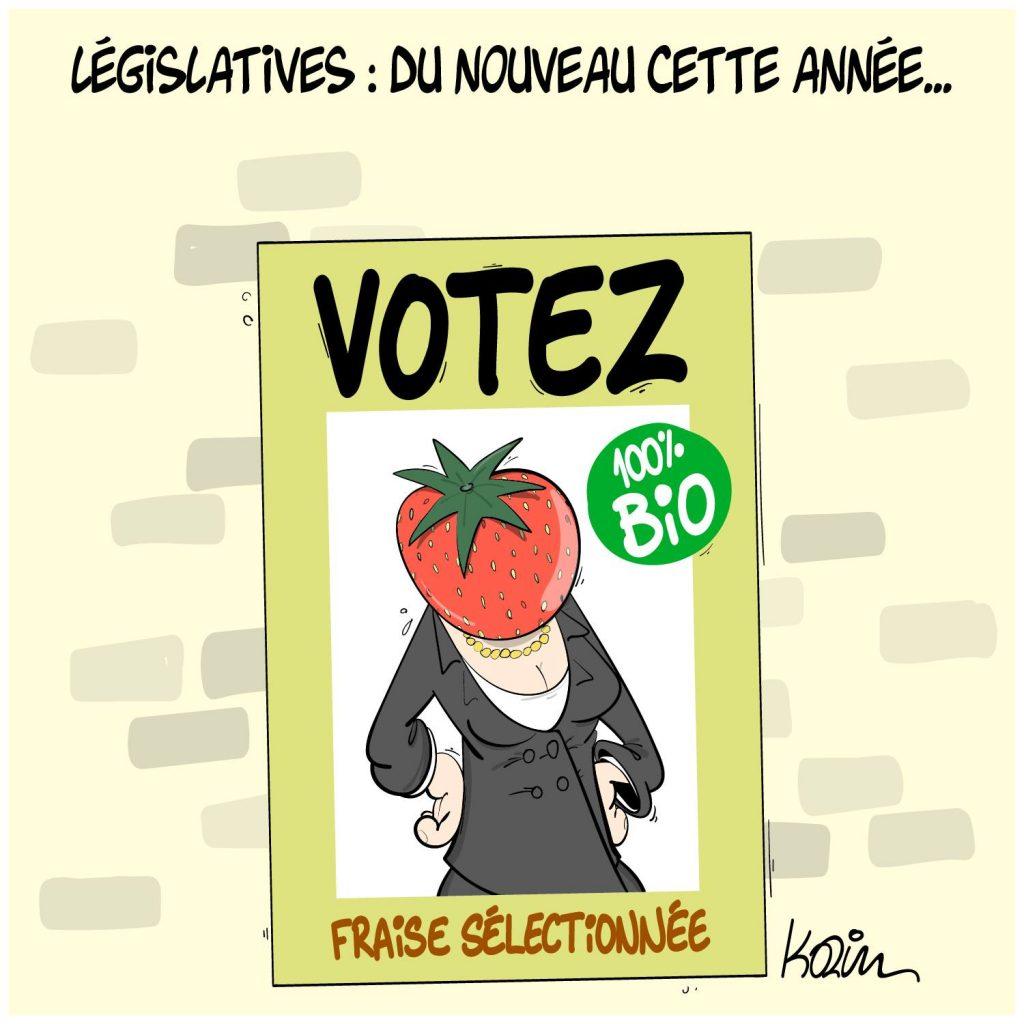 dessin presse humour Algérie élections législatives image drôle fraise algérienne fake news