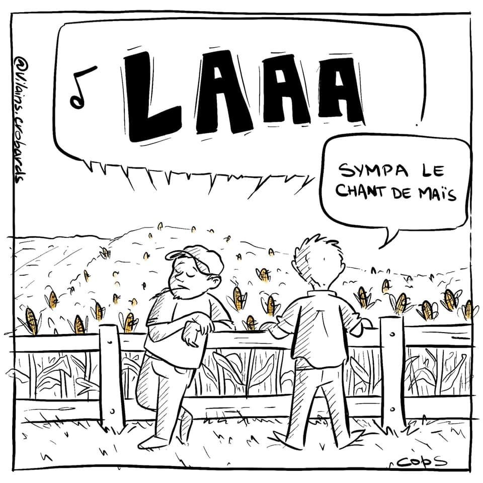 gag image drôle chant de maïs image drôle champ de maïs