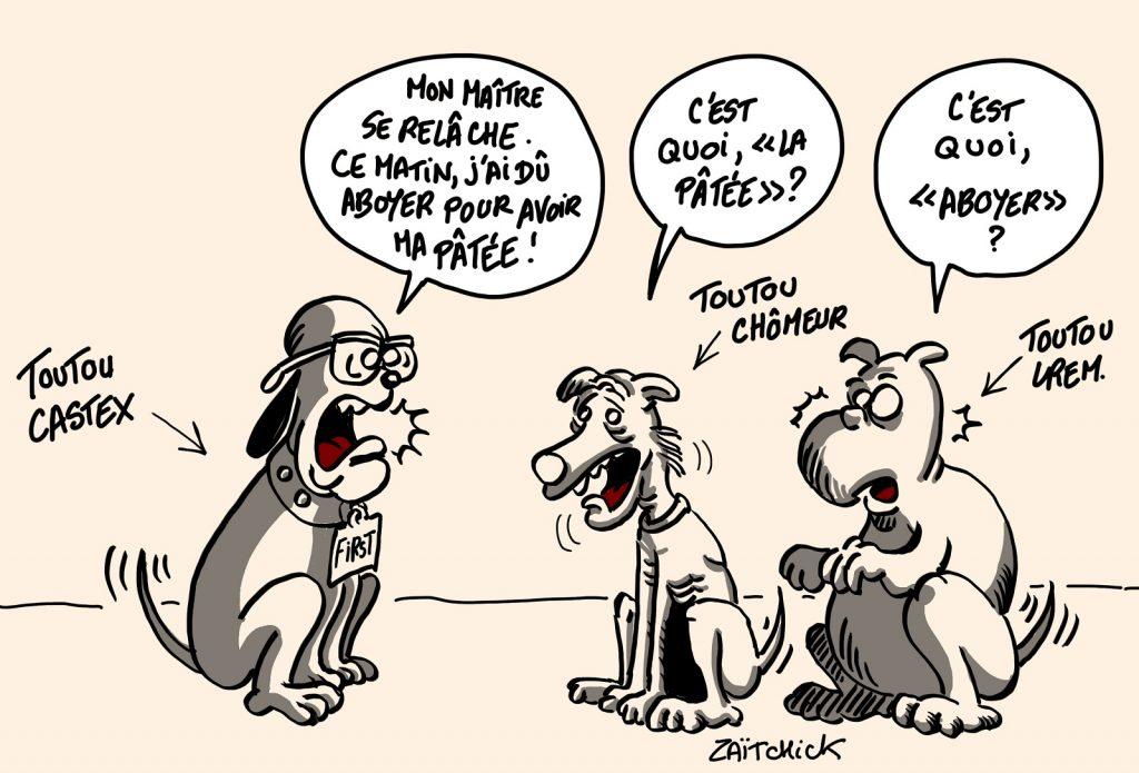 dessin presse humour toutou Jean Castex image drôle chômage LREM