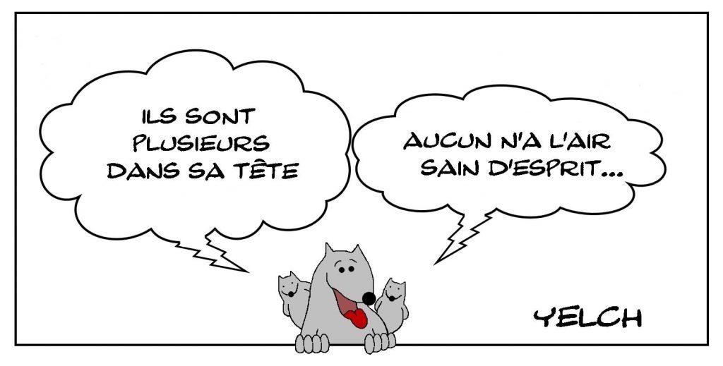dessins humour expression française fous image drôle santé mentale