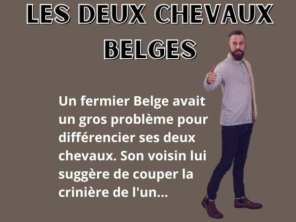 blague sur les Belges, blague Belges, blague fermiers, blague paysans, blague chevaux, blague différence, blague taille, blague couleur, blague animaux, blague crinière, blague queue, humour