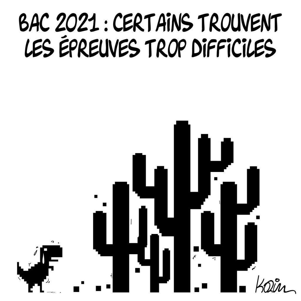 dessin presse humour examen Baccalauréat image drôle difficulté Bac