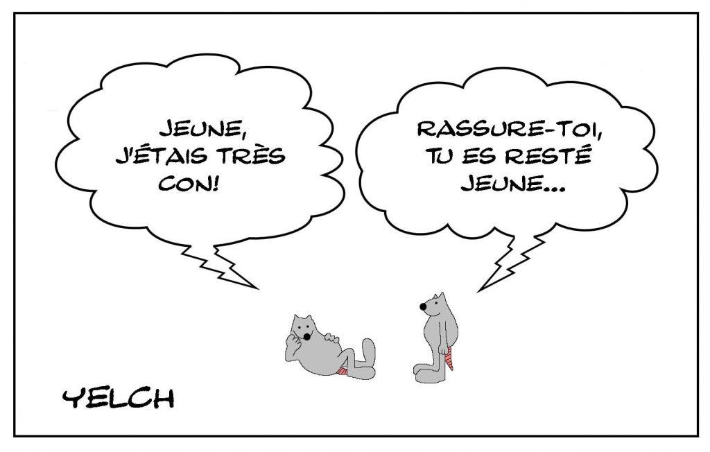 dessins humour Jean-Claude Van Damme image drôle jeunesse connerie