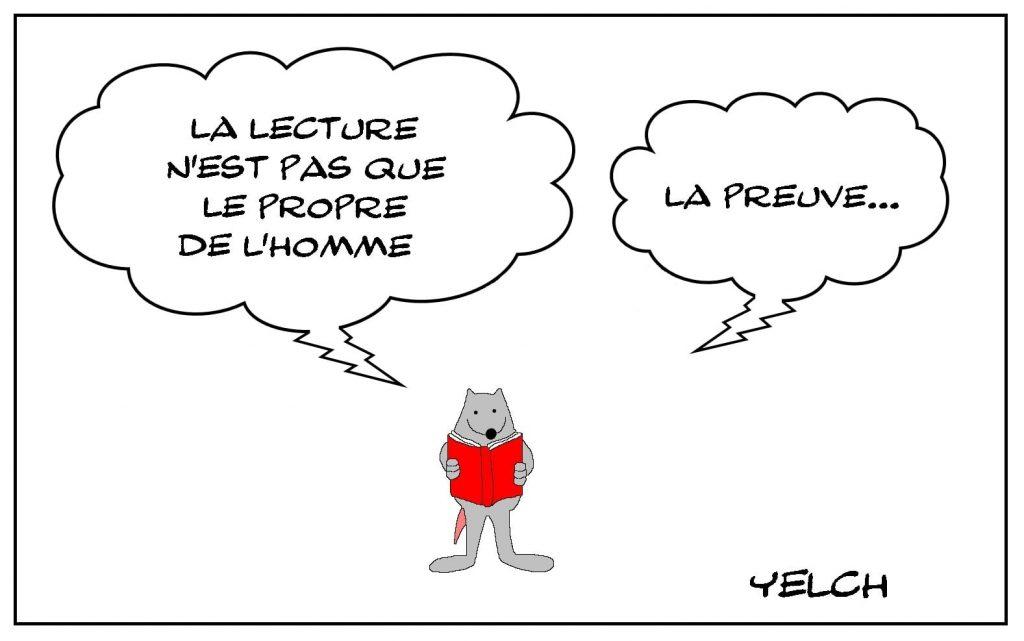 dessins humour lecture homme image drôle rat livre