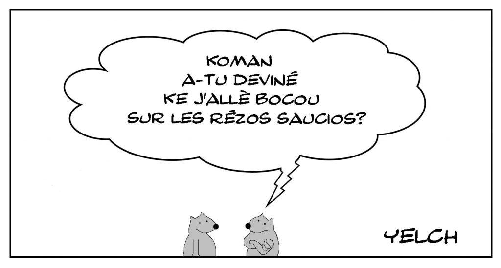 dessins humour orthographe grammaire image drôle réseaux sociaux