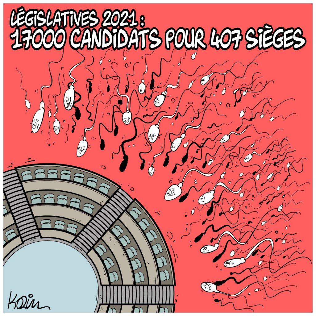 dessin presse humour Algérie image drôle élections régionales