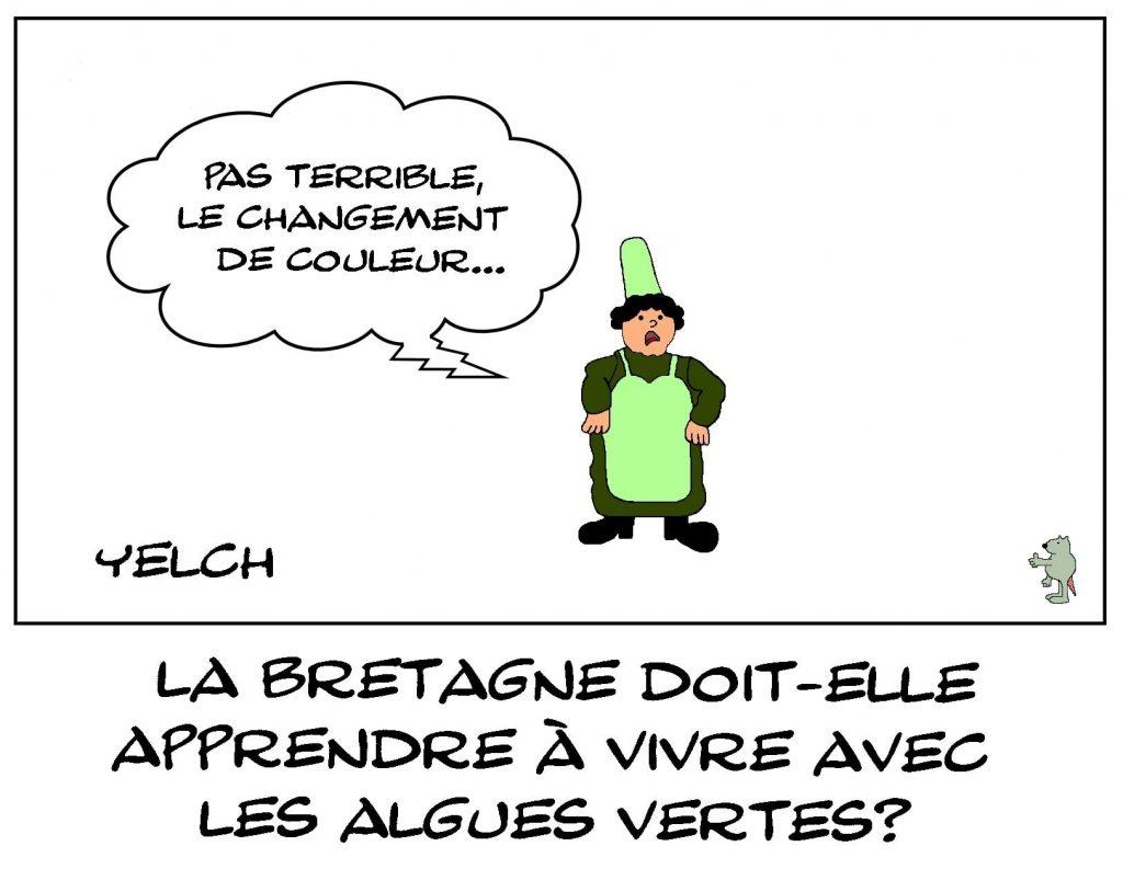 dessins humour Bretagne image drôle algues vertes