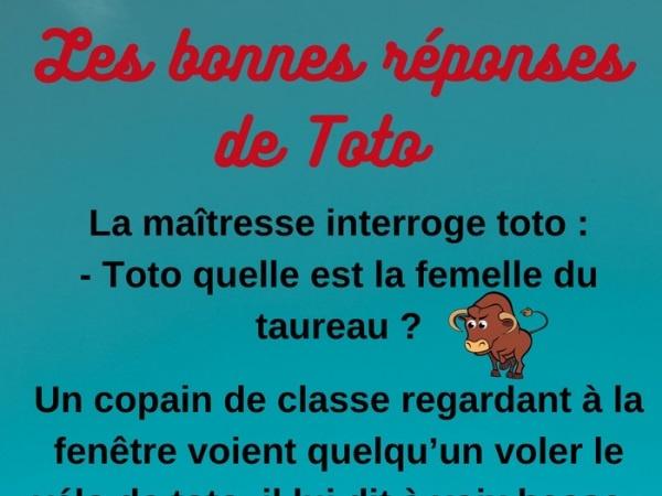 Toto, blague de Toto, école, blague école, maîtresse, blague maîtresse, vélo, blague vélo, vache, blague vache, humour