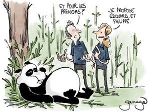 dessin presse humour ZooParc de Beauval image drôle naissance panda Édouard Philippe