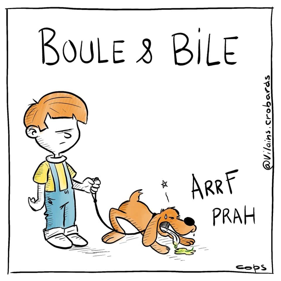 gag image drôle Boule et Bill image drôle bile