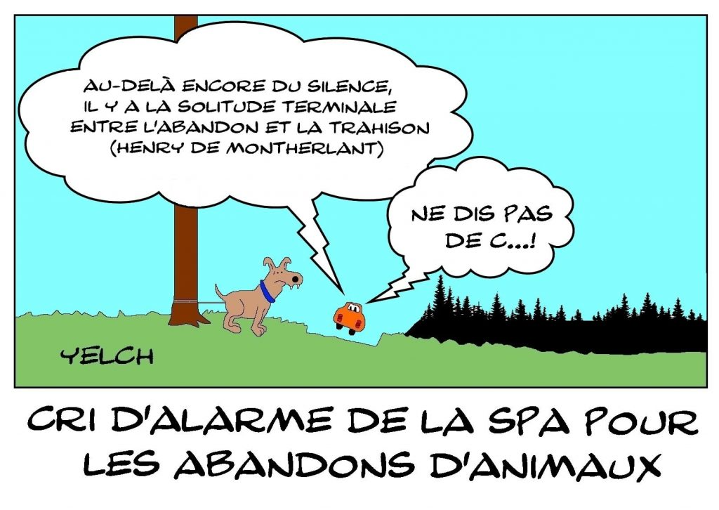 dessins humour abandon animaux image drôle alarme SPA
