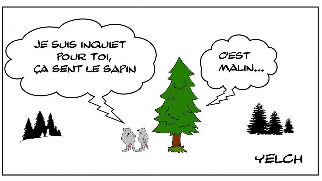 dessins humour expression image drôle sentir le sapin