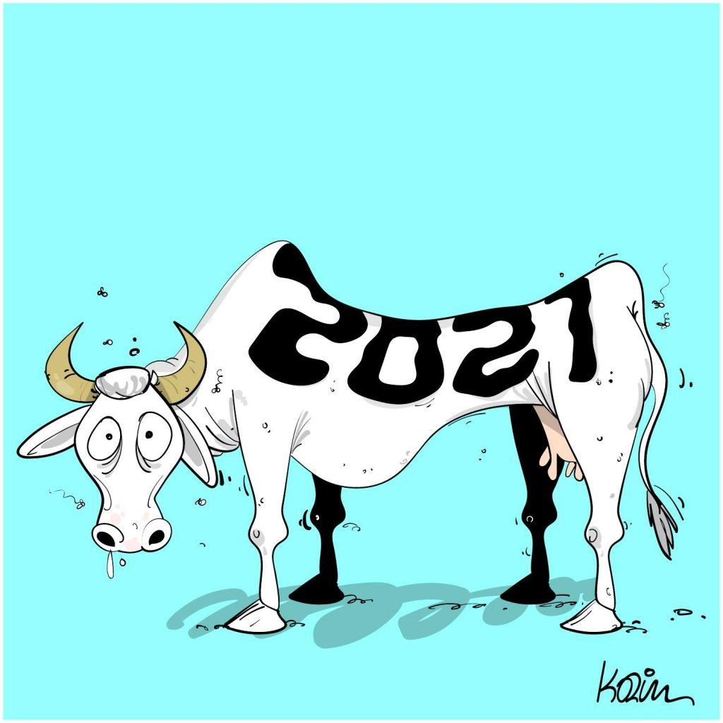 dessin presse humour Algérie coronavirus image drôle crise sanitaire 2021 vache maigre