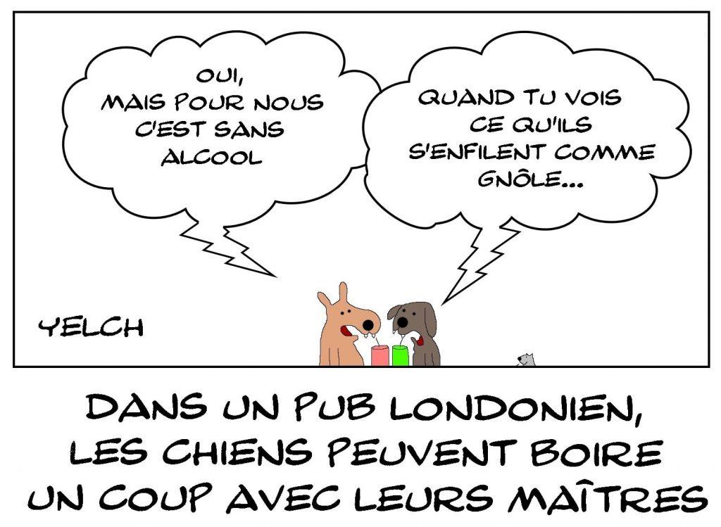 dessins humour pub londonien image drôle chiens Londres