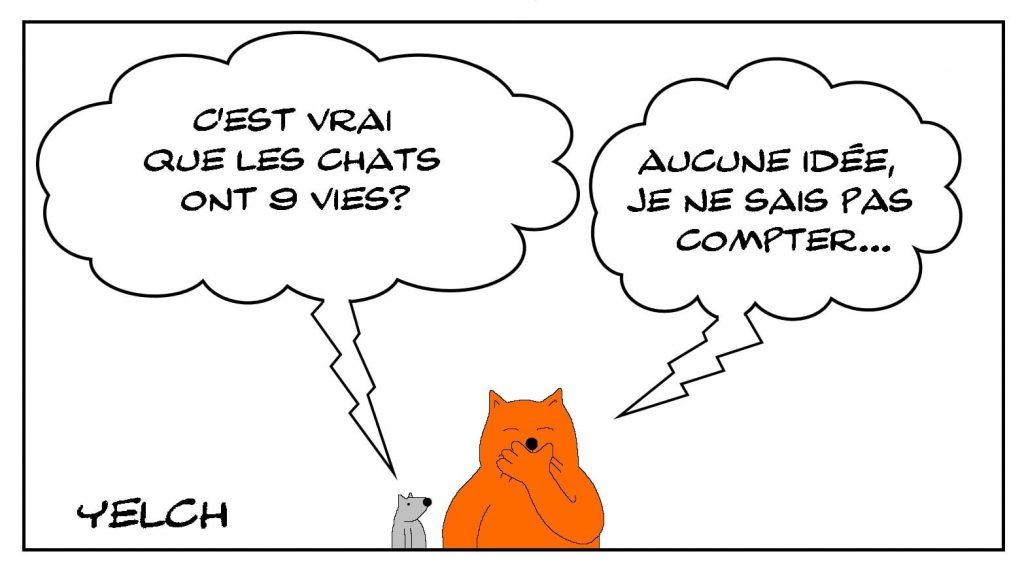 dessins humour chat vies image drôle comptage