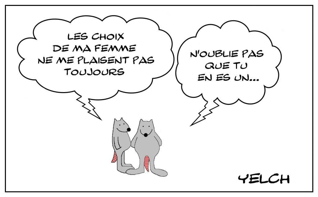 dessins humour choix femme image drôle préférence