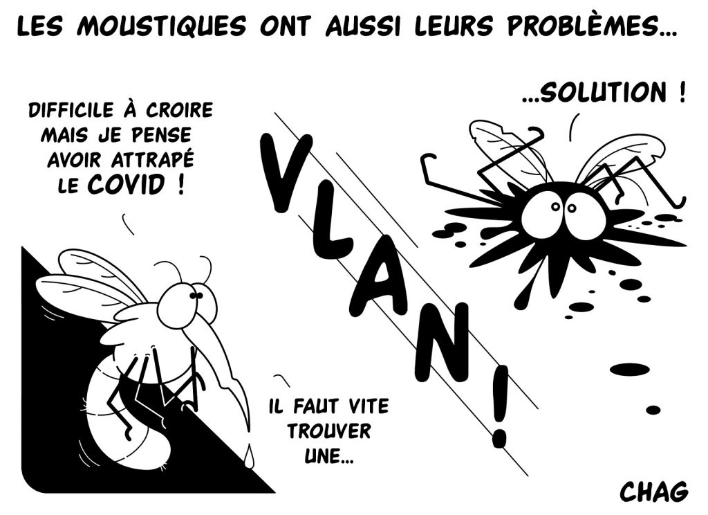 dessin humoristique coronavirus image drôle moustique