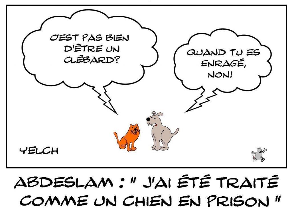 dessins humour Salah Abdeslam image drôle chien prison