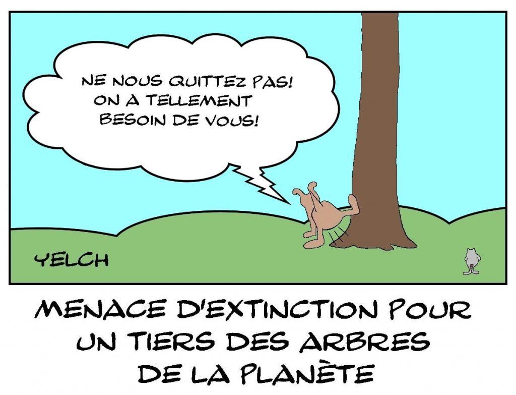 dessins humour menace extinction image drôle arbres planète
