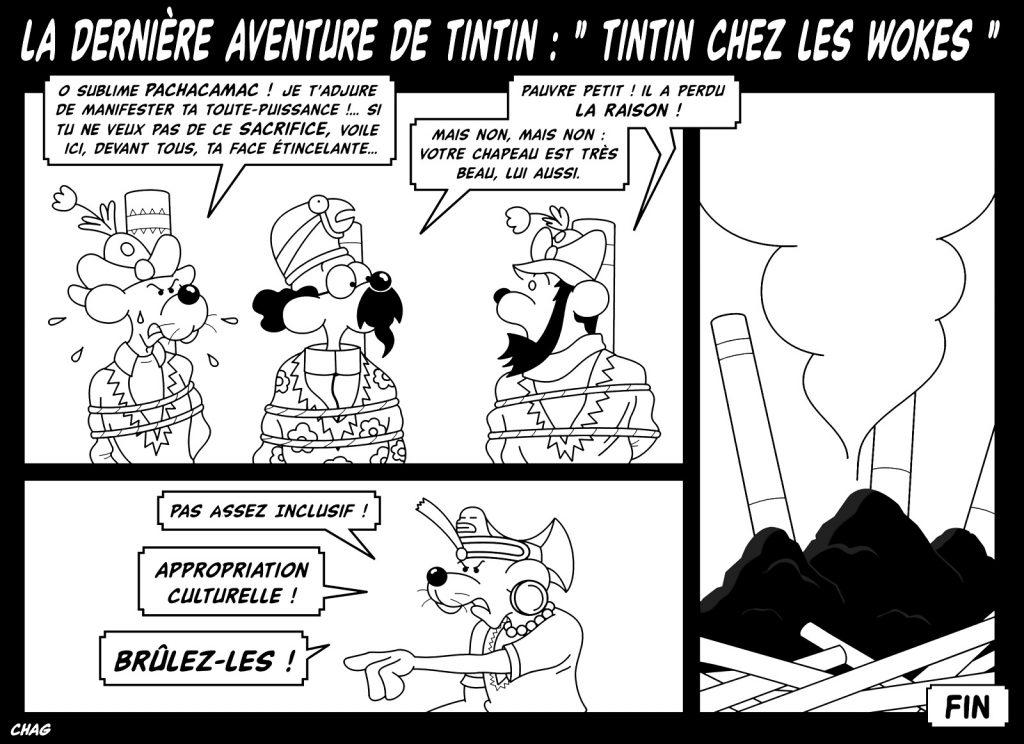 dessin humoristique aventure Tintin image drôle woke wokisme